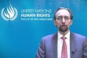 Report on the Statement of Zeid Raad Al Hussein