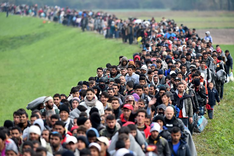 refugees crisis, the result of terrorism